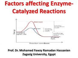 Factors affecting Enzyme- Catalyzed Reactions