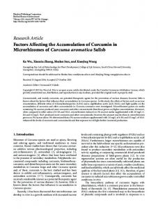 Factors Affecting the Accumulation of Curcumin in Microrhizomes of ...