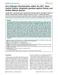 Family Protects Anopheles gambiae against Human and - Mivegec - IRD