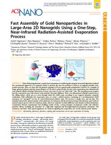 Fast Assembly of Gold Nanoparticles in Large-Area 2D Nanogrids ...