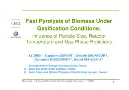 Fast Pyrolysis of Biomass Under Gasification Conditions: Influence of ...