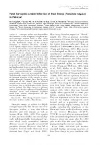 Fatal Sarcoptes scabiei Infection of Blue Sheep (Pseudois ... - BioOne