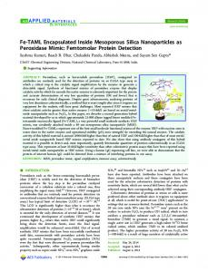 Fe-TAML Encapsulated Inside Mesoporous Silica Nanoparticles as