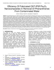 Fe3O4 Nanocomposites In