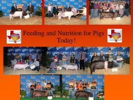 Feeding and Nutrition for Pigs Today! - Lindner Feed & Milling