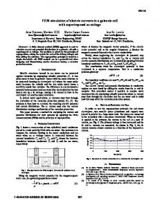 FEM-simulation of electric currents in a galvanic cell ...