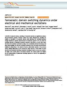 Ferroelastic domain switching dynamics under electrical and ...