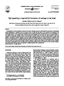 Fgf signalling is required for formation of cartilage in the head - Core