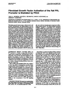 Fibroblast Growth Factor Activation of the Rat PRL Promoter is ...