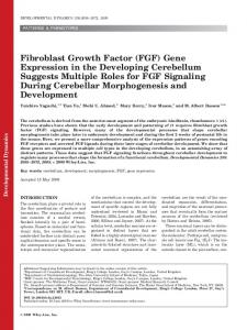 Fibroblast growth factor (FGF) gene expression ... - Wiley Online Library