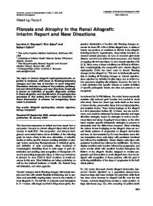 Fibrosis and Atrophy in the Renal Allograft ... - Wiley Online Library
