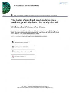 Fifty shades of grey: black beech and mountain beech