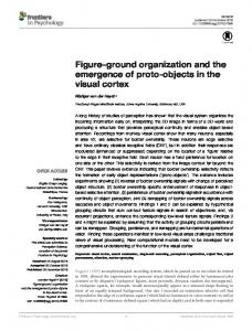 Figure–ground organization and the emergence of ... - Semantic Scholar