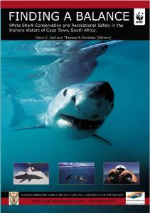 Finding a balance: White shark conservation and ... - White Shark Video