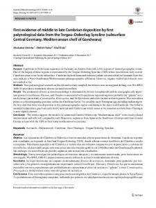 First evidence of middle to late Cambrian deposition by ... - Springer Link