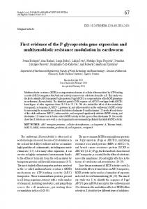 First evidence of the P-glycoprotein gene ... - Semantic Scholar