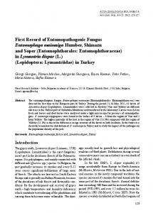 First Record of Entomopathogenic Fungus Entomophaga maimaiga ...
