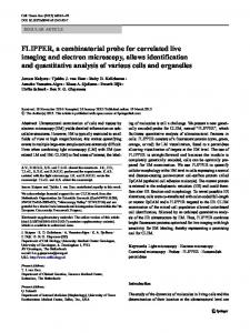 FLIPPER, a combinatorial probe for correlated live ... - Springer Link