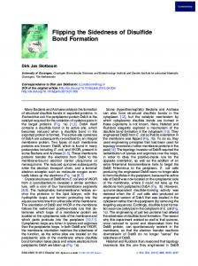 Flipping the Sidedness of Disulfide Bond Formation
