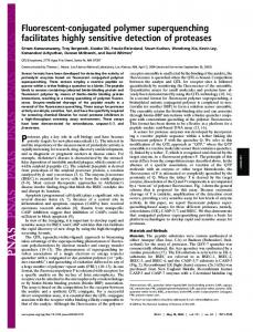 Fluorescent-conjugated polymer superquenching