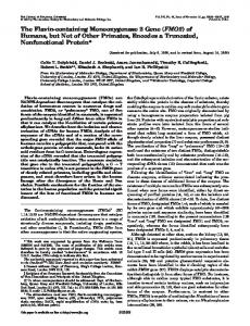 FMO2 - The Journal of Biological Chemistry