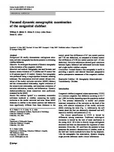 Focused dynamic sonographic examination of the ... - Springer Link