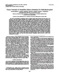 for Helicobacter pylori - Journal of Clinical Microbiology - American ...