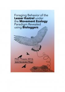 Foraging behavior of the lesser kestrel under the Movement Ecology ...