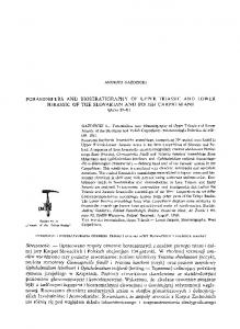 FORAMINIFERS AND BIOSTRATIGRAPHY OF UPPER TRIASSIC ...