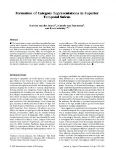 Formation of Category Representations in ... - Semantic Scholar