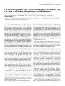 Fos Protein Expression and Cocaine-Seeking