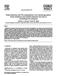 Fossil electricity and CO2 sequestration: how natural gas prices, initial ...