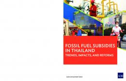 Fossil Fuel Subsidies in Thailand: Trends ... - Asian Development Bank