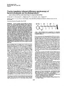 Fourier transform infrared difference.spectroscopy of ... - Europe PMC