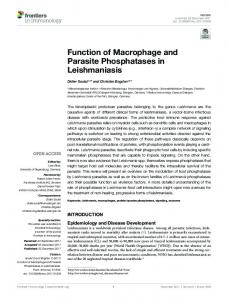 Function of Macrophage and Parasite