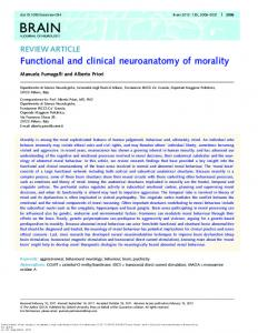 Functional and clinical neuroanatomy of morality - Brain