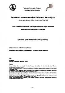 Functional Assessment after Peripheral Nerve Injury