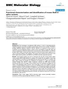 Functional characterization and identification of mouseRad51dsplice ...