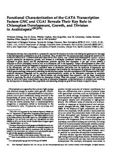 Functional Characterization of the GATA ... - Plant Physiology