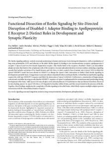 Functional Dissection of Reelin Signaling by Site-Directed Disruption ...