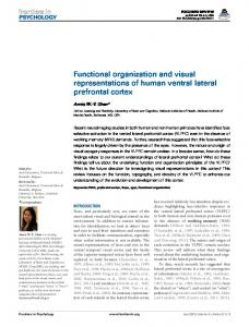 Functional organization and visual representations of ... - BioMedSearch