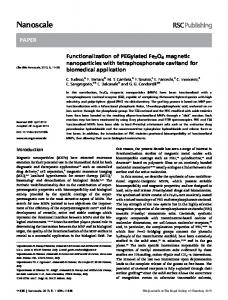 Functionalization of PEGylated Fe3O4 magnetic nanoparticles with ...