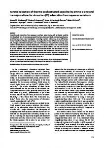 Functionalization of thermo-acid activated sepiolite by amine-silane ...