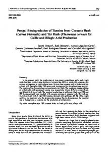 Fungal Biodegradation of Tannins from Creosote ... - Semantic Scholar