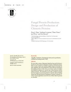 Fungal Protein Production: Design and Production of