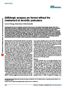 GABAergic synapses are formed without the involvement of dendritic ...