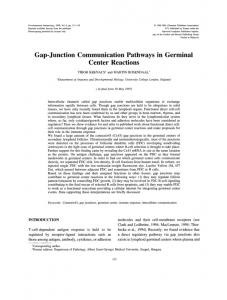 Gap-Junction Communication Pathways in ... - Semantic Scholar