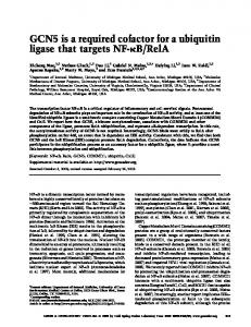 GCN5 is a required cofactor for a ubiquitin ligase that targets NF-kB/RelA