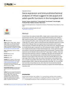 Gene expression and immunohistochemical analyses of ... - PLOS