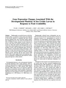 Gene Expression Changes Associated With the Developmental ...